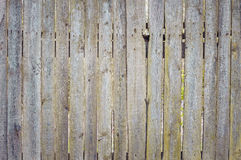 Background texture of an old fence boards. Background texture of an old fence from boards with rusty nails Stock Images