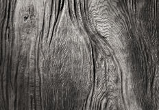 Background texture of old gray wooden board Stock Photos