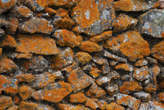 Background texture of old stone wall with orange lichen Stock Image