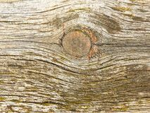 Background, texture of old wooden surface stock images