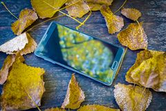 Top view of big black cell phone inside yellow autumnal leaves. Background texture with old wooden table and top view of big black cell phone inside yellow Royalty Free Stock Photos