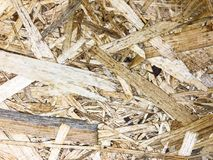 Background and texture OSB, surface of pressed wood board. Studio Photo Royalty Free Stock Image