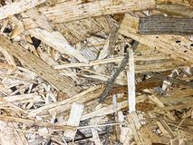 Background and texture OSB, surface of pressed wood board. Studio Photo Stock Photography