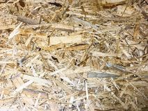 Background and texture OSB, surface of pressed wood board. Studio Photo Royalty Free Stock Photography