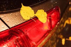 Background texture, pattern. Dimensions of the car. Dimensional. Headlights and taillights of the car stock photography