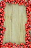 Background texture pattern of red rowan fruits frame (Sorbus) Royalty Free Stock Images