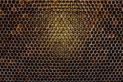 Background texture and pattern of a section of wax honeycomb from a bee hive filled with golden honey in a full frame view royalty free stock image