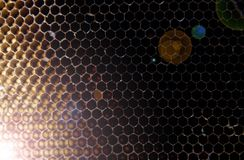 Yellow honeycomb with honey and bee, background stock photography