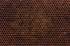 Section of wax honeycomb from beehive as background. royalty free stock photography