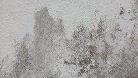 Background & texture. Photo of cemen background texture Stock Photo