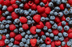 Background texture raspberries and blueberries blueberry Royalty Free Stock Image