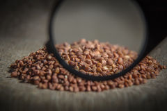 Background texture of raw buckwheat groats. Buckwheat under the magnifying glass stock photos