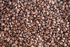 Background texture of roasted coffee beans Royalty Free Stock Image