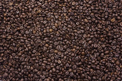 Background texture of roasted coffee beans Stock Image