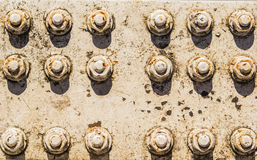 Background texture of rusty nuts and bolts Stock Photography
