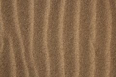 Background texture sea coast wind sand waves Royalty Free Stock Image