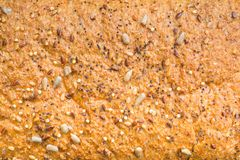 Background texture of a seeded loaf of bread Stock Image
