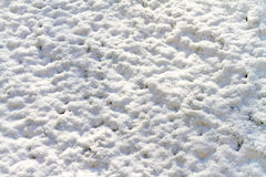 Background texture of snow on uneven ground royalty free stock images