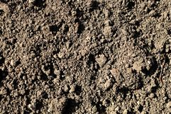 Background or texture of soil in rural. Black earth, humus. Stock Photos
