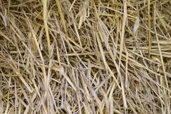 Background texture of a stack of straw. stock photos