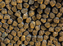 Background texture of steel rods Royalty Free Stock Image