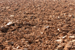 Background texture of stony tilled earth. Background texture of barren brown stony tilled or plowed earth or soil ready for cultivation in a farm field Royalty Free Stock Images