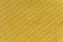 Background, texture of striped knitted fabric colors ocher yellow with lurex Royalty Free Stock Image