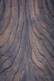 Background or Texture of Surface brown wood Royalty Free Stock Photo