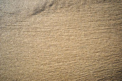 A background texture of unrefined, damp and grainy natural golde Royalty Free Stock Photo