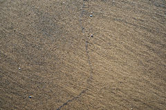 A background texture of unrefined, damp and grainy natural golde Stock Photography