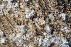 A background texture of unrefined, damp and grainy natural golde Royalty Free Stock Photos