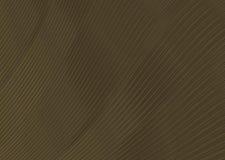 Background texture wave brown color mahogany narrow band. Infinite Royalty Free Stock Photos