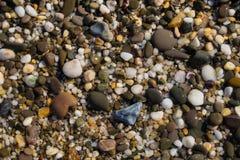 Background texture of wet beautiful sea stones stock image