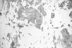 Background texture of white grungy concrete wall Royalty Free Stock Photography