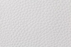 Background with texture of white leather Stock Images