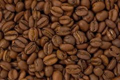 Light Roasted Coffee Beans stock photos