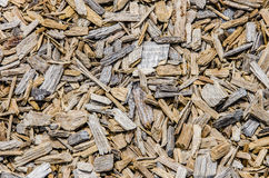 Background texture of wood chips Stock Photo