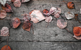 Background texture with wooden table and red autumnal leaves Stock Photo