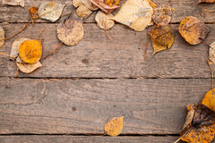 Background texture with wooden table and yellow autumnal leaves Stock Photos