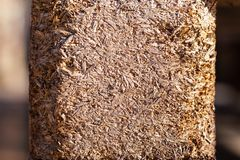 Background texture of yellow pressed wood chips royalty free stock photos