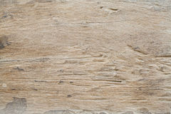Background textured old wood splat have scratch. Nature Royalty Free Stock Images