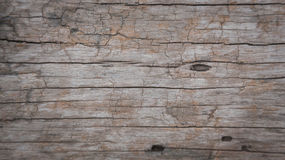 Background or Textured  of Surface brown wood Stock Images