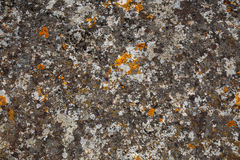 Background textures. Stone texture close-up with colorful spots Stock Photos