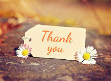 Background thank you Royalty Free Stock Photography