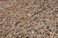 Background with thatched roof detail Royalty Free Stock Photography