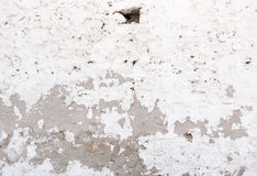 Background. The Old White-washed Walls With Shades. Royalty Free Stock Photography