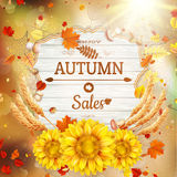 Background on a theme of autumn. Sale. EPS 10 Stock Image