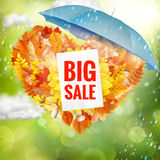 Background on a theme of autumn. Sale. EPS 10 Royalty Free Stock Photo