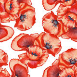 Background three poppy. seamless pattern. watercolor illustratio Stock Images