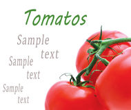 Background of the three tomato Stock Photo